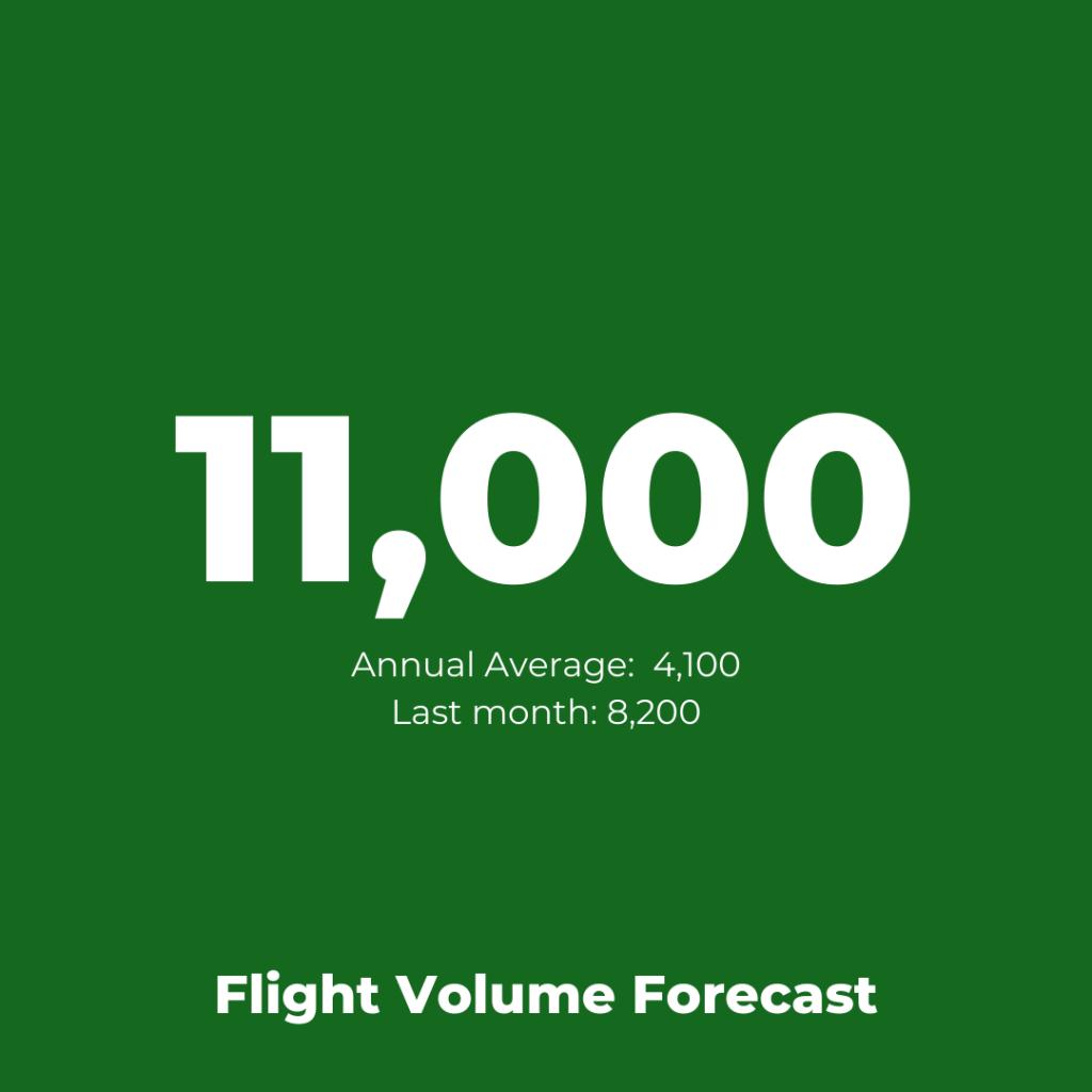 British Airways - Flight Volume Forecast